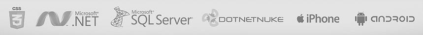 Soluciones de Diseño y Desarrollo Web - Nebosoft